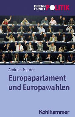 Europaparlament und Europawahlen von Große Hüttmann,  Martin, Maurer,  Andreas, Riescher,  Gisela, Weber,  Reinhold, Wehling,  Hans-Georg