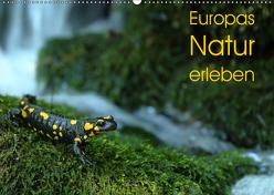 Europas Natur erleben (Wandkalender 2019 DIN A2 quer) von Schäfer,  Otto