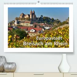 Europastadt Breisach am Rhein (Premium, hochwertiger DIN A2 Wandkalender 2021, Kunstdruck in Hochglanz) von Wilczek,  Dieter-M.