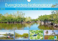 Everglades Nationalpark in Florida (Wandkalender 2019 DIN A4 quer) von CALVENDO
