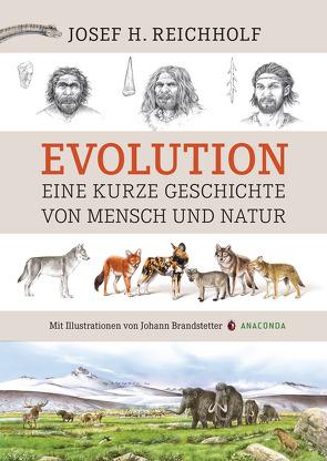 Evolution von Reichholf,  Josef H.