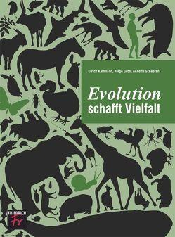 Evolution schafft Vielfalt von Groß,  Jorge, Kattmann,  Ulrich, Scheersol,  Annette