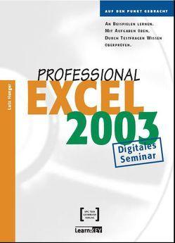 Excel 2003 Professional – Lernprogramm/Digitales Seminar von Hunger,  Lutz