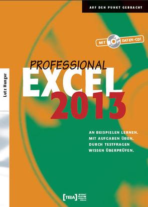 Excel 2013 Professional von Hunger,  Lutz