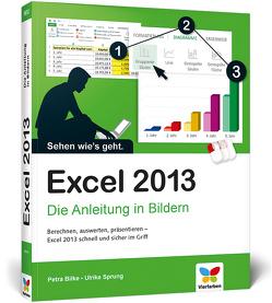 Excel 2013 von Bilke,  Petra, Sprung,  Ulrike