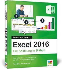 Excel 2016 von Bilke,  Petra, Sprung,  Ulrike