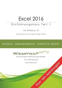 Excel 2016 – Einführungskurs Teil 1 von Kynast,  Peter