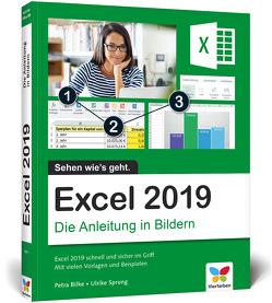 Excel 2019 von Bilke,  Petra, Sprung,  Ulrike