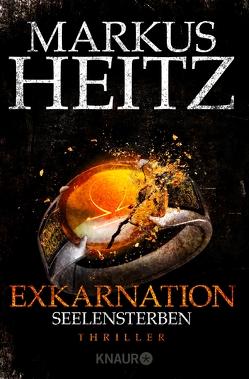 Exkarnation – Seelensterben von Heitz,  Markus