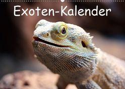 Exoten-Kalender (Wandkalender 2019 DIN A2 quer) von Witkowski,  Bernd