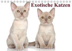 Exotische Katzen / Geburtstagskalender (Tischkalender immerwährend DIN A5 quer) von Stanzer,  Elisabeth