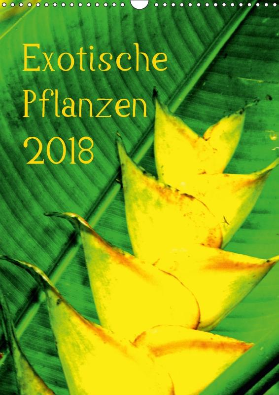 exotische pflanzen wandkalender 2018 din a3 hoch von brun annina e. Black Bedroom Furniture Sets. Home Design Ideas