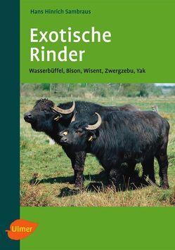 Exotische Rinder von Sambraus,  Hans Hinrich