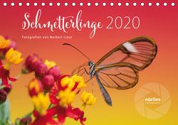 Exotische Schmetterlinge 2020 (Tischkalender 2020 DIN A5 quer) von Liesz,  Norbert