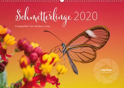Exotische Schmetterlinge 2020 (Wandkalender 2020 DIN A2 quer) von Liesz,  Norbert