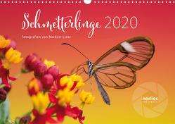 Exotische Schmetterlinge 2020 (Wandkalender 2020 DIN A3 quer) von Liesz,  Norbert