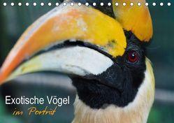 Exotische Vögel im Porträt (Tischkalender 2018 DIN A5 quer) von Williger,  Christina