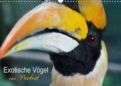 Exotische Vögel im Porträt (Wandkalender 2018 DIN A3 quer) von Williger,  Christina