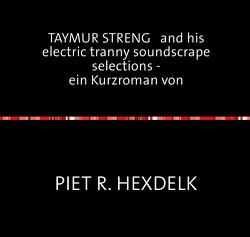Experimentelle Kurzromane von Piet R.Hexdelk / TAYMUR STRENG   and his electric tranny soundscrape selections –                                ein Kurzroman von von Hexdelk,  Piet R., Heydecke,  Martin