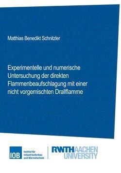 Experimentelle und numerische Untersuchung der direkten Flammenbeaufschlagung mit einer nicht vorgemischten Drallflamme von Matthias Benedikt,  Schnitzler
