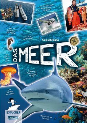 Explorer, Band 8: Das Meer von Gehrmann,  Alva, Windecker,  Jochen
