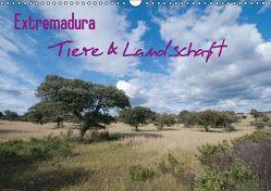 Extremadura, Tiere & Pflanzen (Wandkalender immerwährend DIN A3 quer) von Martin,  Christof