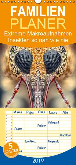 Extreme Makroaufnahmen – Insekten so nah wie nie – Familienplaner hoch (Wandkalender 2019 , 21 cm x 45 cm, hoch) von Ferdigrafie