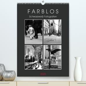 F A R B L O S – Schwarzweiß Fotografien (Premium, hochwertiger DIN A2 Wandkalender 2020, Kunstdruck in Hochglanz) von Seidl,  Helene