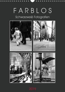 F A R B L O S – Schwarzweiß Fotografien (Wandkalender 2019 DIN A3 hoch) von Seidl,  Helene