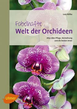 Fabelhafte Welt der Orchideen von Röllke,  Lutz