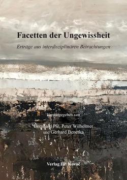 Facetten der Ungewissheit von Benetka,  Gerhard, Plé,  Bernhard, Wilhelmer,  Peter
