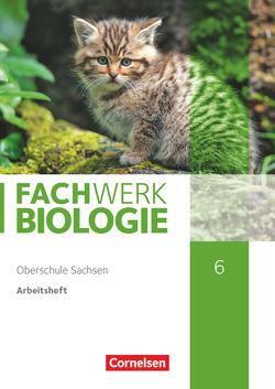 Fachwerk Biologie – Sachsen / 6. Schuljahr – Arbeitsheft von Wehser,  Adria