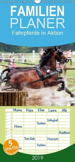 Fahrpferde in Aktion – Familienplaner hoch (Wandkalender 2019 , 21 cm x 45 cm, hoch) von Sixt,  Marion