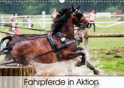 Fahrpferde in Aktion (Wandkalender 2019 DIN A3 quer) von Sixt,  Marion