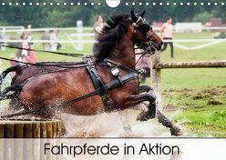 Fahrpferde in Aktion (Wandkalender 2019 DIN A4 quer) von Sixt,  Marion