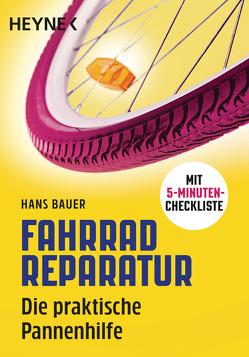 Fahrradreparatur von Bauer,  Hans