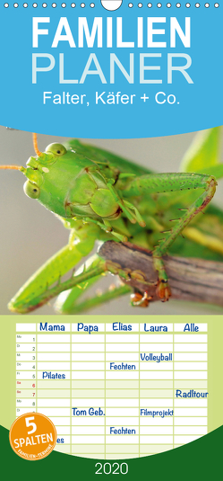 Falter, Käfer und Co.faszinierend, doch extrem gefährdet – Familienplaner hoch (Wandkalender 2020 , 21 cm x 45 cm, hoch) von Schmidbauer,  Heinz