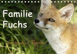 Familie Fuchs hautnah in Berlin (Tischkalender 2019 DIN A5 quer) von Brinker,  Sabine