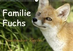 Familie Fuchs hautnah in Berlin (Wandkalender 2019 DIN A3 quer) von Brinker,  Sabine