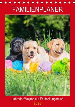 Familienplaner – Labrador Welpen entdecken die Welt (Tischkalender 2020 DIN A5 hoch) von Starick,  Sigrid