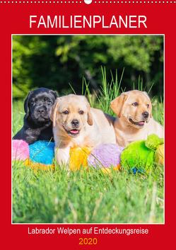 Familienplaner – Labrador Welpen entdecken die Welt (Wandkalender 2020 DIN A2 hoch) von Starick,  Sigrid