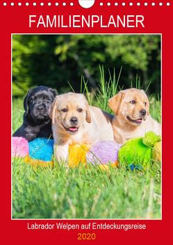 Familienplaner – Labrador Welpen entdecken die Welt (Wandkalender 2020 DIN A4 hoch) von Starick,  Sigrid