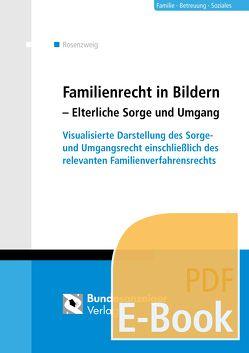 Familienrecht in Bildern – Elterliche Sorge und Umgang (E-Book) von Rosenzweig,  Göntje