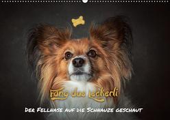 Fang das Leckerli! (Wandkalender 2019 DIN A2 quer) von Schöberl,  Jürgen