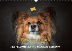 Fang das Leckerli! (Wandkalender 2019 DIN A3 quer) von Schöberl,  Jürgen