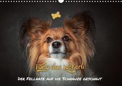 Fang das Leckerli! (Wandkalender 2020 DIN A3 quer) von Schöberl,  Jürgen