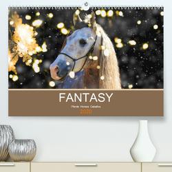 FANTASY Pferde Horses Caballos (Premium, hochwertiger DIN A2 Wandkalender 2020, Kunstdruck in Hochglanz) von Eckerl Tierfotografie,  Petra