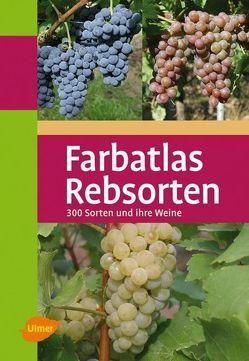 Farbatlas Rebsorten von Ambrosi,  Hans, Hill,  Bernd H. E., Maul,  Erika, Rühl,  Ernst H., Schmid,  Joachim, Schumann,  Fritz
