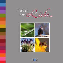 Farben der Liebe von Wälscher,  André