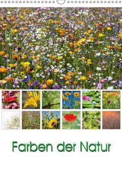 Farben der Natur (Wandkalender 2019 DIN A3 hoch)